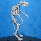 Resin Master - Werewolf Skeleton Dolly